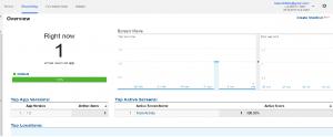 Analytics Screen Shot