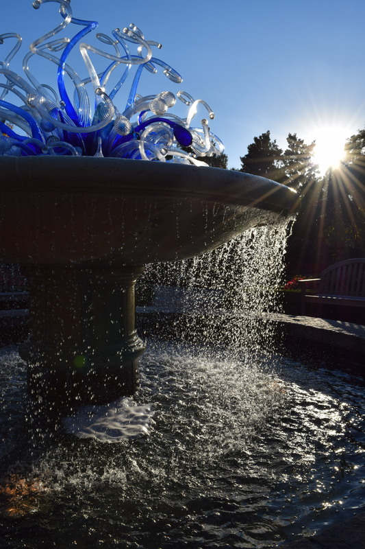 A fountain from the gardens illuminated by the sinking sun.